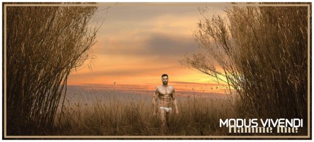 3.MV-FlammeLine-Campaign Banner
